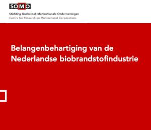 biobrandstof SOMO-paper