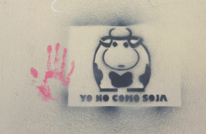 eet geen soja blog voor Groene Garde